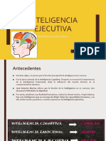 Inteligencia Ejecutiva PDF