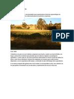 Agroturismo en Colombia