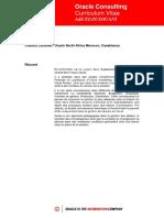 CV_Elousouani_v2.pdf