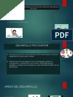 Caracteristicas Del Desarrollo Psicomotor