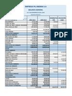 BALANCE GENERAL BRA PIL.docx