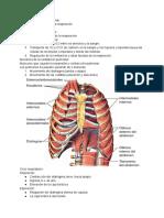 Cap 38 fisiología respiratoria
