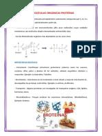 BIOMOLÉCULAS ORGÁNICAS PROTEÍNAS