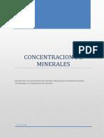 Trabajo de Concentracion de Minerales Informe