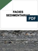 Facies Sedimentarias