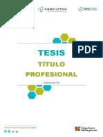 E053 2017 UNSAAC 02 Tesis Titulo Profesional Bases VF