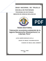 Tesis Doctorado Andrés Rodríguez Castillo