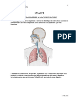 guia2generalidadesdelaparatorespiratorio-100816174759-phpapp02