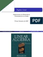 AL-CAP1.pdf