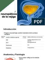 Trastornos Neuropáticos de La Vejiga