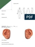 Anamnese Auricular