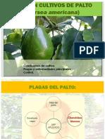 mippalto2014100-150109231256-conversion-gate01.pptx