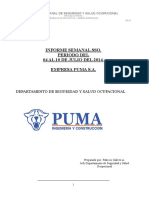 Informe semanal PUMA S A    Semana del 04 al 10 de Julio 2014.docx