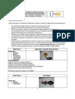 Guia Laboratorio.pdf Fisica