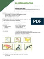 las-cadenas-alimentarias.doc
