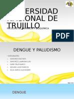 4. Paludismo y Dengue - III B