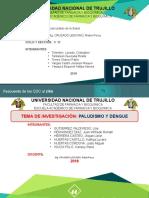 5. Parasitosis III B