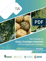 Plan Estrategico de Ciencia Tecnología e innovación Hortalizas