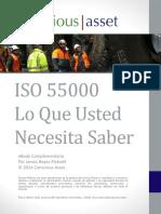 249714724-eBook-ISO55000-Espanol.pdf