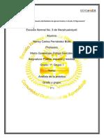 Anàlisis y diagnòstico de la pràctica preescolar Ixtapaluca