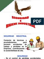 Curso Seguridad Higiene Industrial Causas Accidentes Barreras Prevencion Factores Riesgo Senales Equipos Proteccion