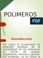 Polimeros Felicitas Exposicion