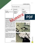 mineragrafia1.pdf