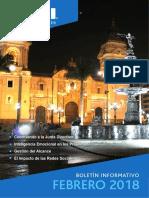 BOLETÍN - PMI - Febrero 2018.pdf