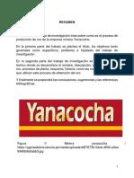 HIDROMETALURGIA-YANACOCHA