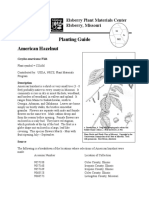 american hazelnut.pdf