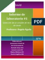 360586298-Informe-de-Biologia-El-Corazon.docx