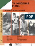 Povos Indígenas no Brasil - volume 3