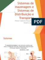 3 - Sistemas de Armazenagem e Sistemas de Distribuição e Transporte