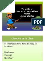 Estructura de Una Planta 8