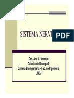 Bulbo y protuberancia.pdf