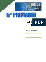 ALGEBRA  I BIM.doc