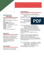 Curriculum Vitae Marcelo Andrade Ingles