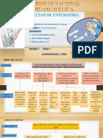 Arbol de Causas Efectos Proyecto Mgl