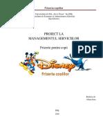 managementul-serviciilor-proiect