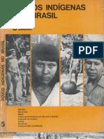 Povos Indígenas no Brasil - volume 5