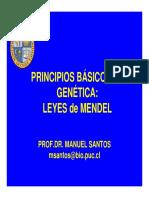 40.Mendel