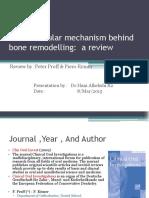 Hani3_molocular Mechanism of Bone Remodelling