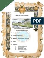 flotacion de antamina.pdf