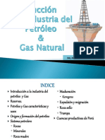 1- introduccion al petroleo y gas Natural.pdf