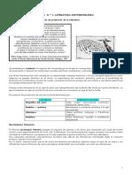 GUIA-LITERATURA-CONTEMPORANEA-4º-medio.pdf
