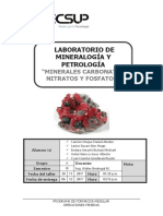 Informe-8-mineralogia