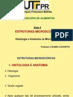 Aula 4 LL - Estruturas Microscópicas