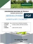 Sistema Intersticial