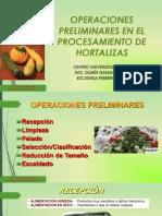 Métodos para pelado de hortalizas.pdf