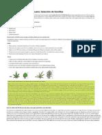 Guía de Cultivo 01